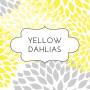 w1 yellow dahlia